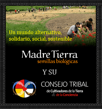 Consejo Tribal